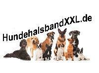 HundehalsbandXXL_Palundu_Profilbild