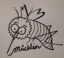 Muecklein_Palundu_Profilbild