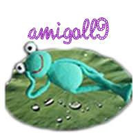 amigoll9_Palundu_Profilbild