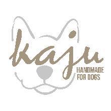 Kaju_Palundu_Profilbild