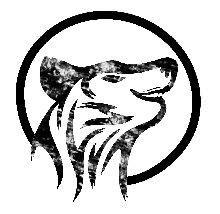 KinzigWolf_Palundu_Profilbild