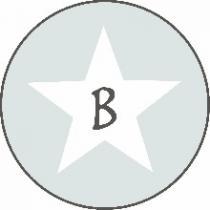 baciberlin