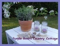PurpleRosesCountryCottage