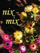 nixmix