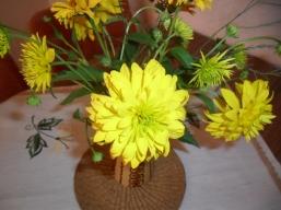 meine Lieblingsblumen aus unserem Garten