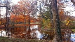 Herbst in Augsburg