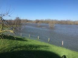 Hochwasser in den Niederlanden