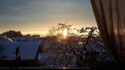 Von der Morgensonne geküßt