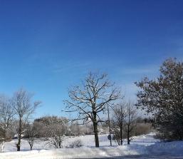 Wintermärchen in der Eifel