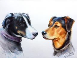ein doppeltes Hundeportrait