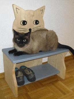 Katze auf der Kinderbank Katze