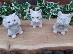 Katzen Trio