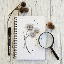 Zeichnungen mit Tusche