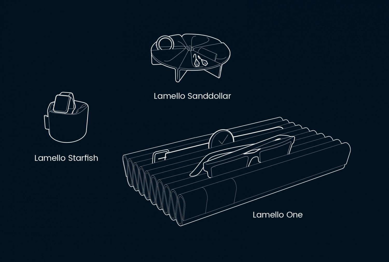 Kleinesbild - lamello Sanddollar Merino Filz Design Aufbewahren Präsentieren Organisieren Schützen #green