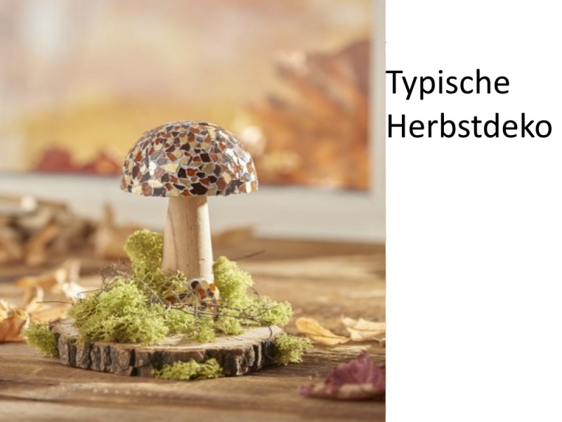 Kleinesbild - Islandmoos gefärbt, 10 Gramm-Tütchen, Moos zu dekorieren, Trockengestecke, Modellbau