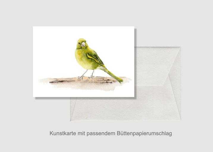 - Kunstkarte incl. Büttenumschlag Fine Art Print des Aquarelles, Grünfink - Kunstkarte incl. Büttenumschlag Fine Art Print des Aquarelles, Grünfink