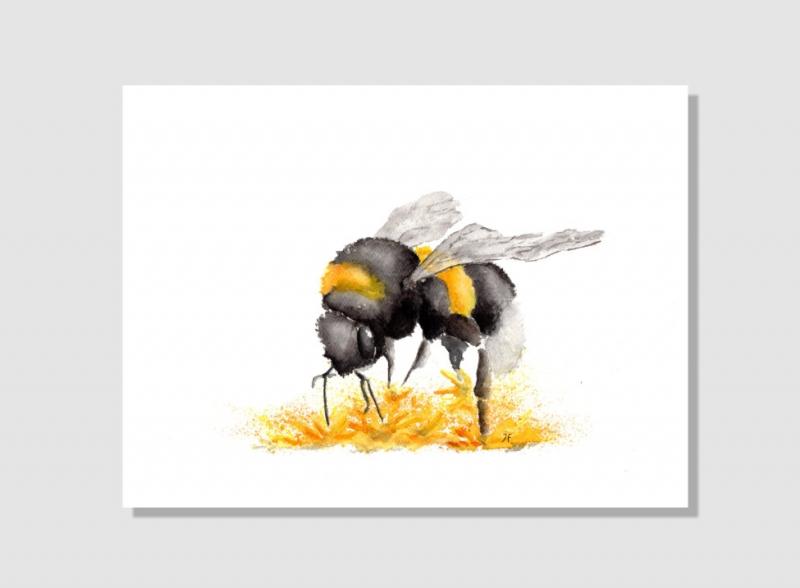 Kleinesbild - Fine Art Print vom Original-Aquarell Hummel, in verschiedenen Größen erhältlich