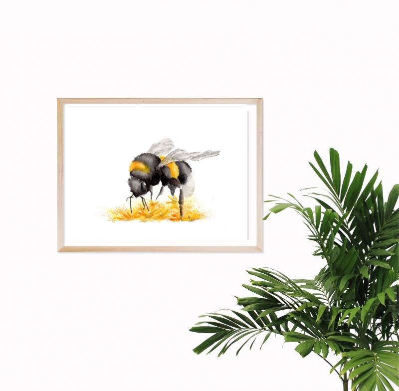 - Fine Art Print vom Original-Aquarell Hummel, in verschiedenen Größen erhältlich - Fine Art Print vom Original-Aquarell Hummel, in verschiedenen Größen erhältlich
