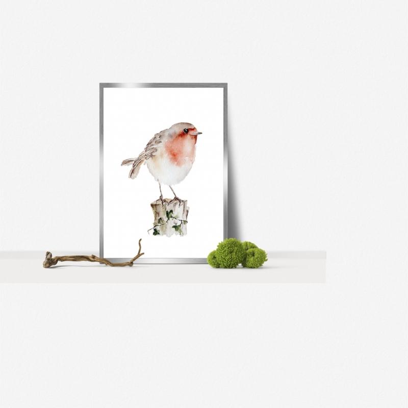 - Fine Art Print des handgemalten Aquarells , Rotkehlchen - Fine Art Print des handgemalten Aquarells , Rotkehlchen