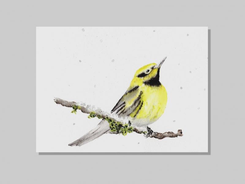 Kleinesbild - Fine Art Print des handgemalten Aquarells , Vogel