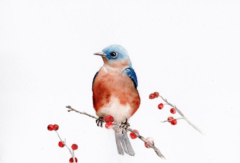 Kleinesbild - Fine Art Print des handgemalten Aquarells , Vogel mit Beeren