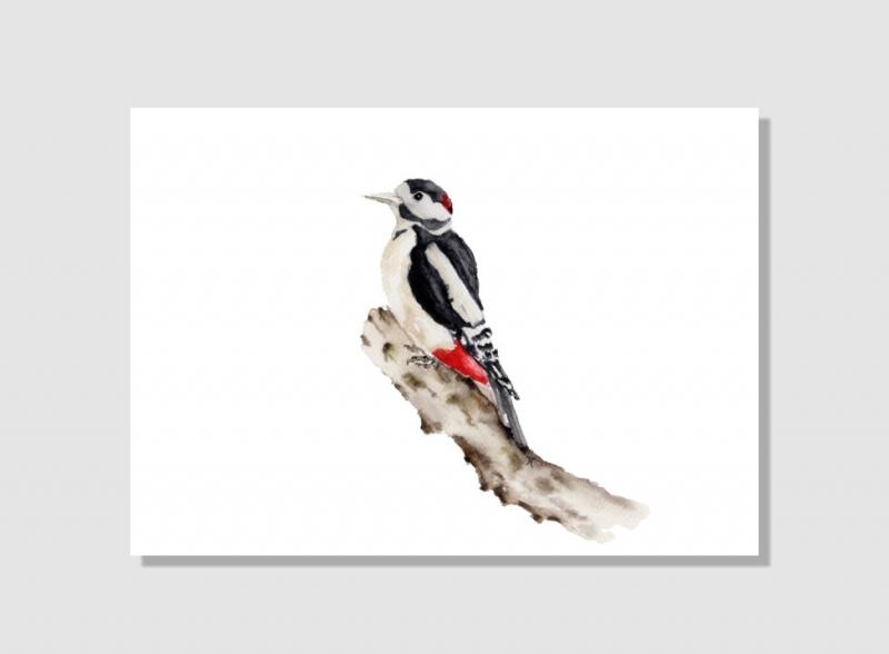 Kleinesbild - Fine Art Print des handgemalten Aquarells, Buntspecht