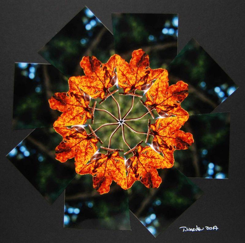 - Fotocollage Handgemachte Kunst aus Fotos Unikat - Fotocollage Handgemachte Kunst aus Fotos Unikat