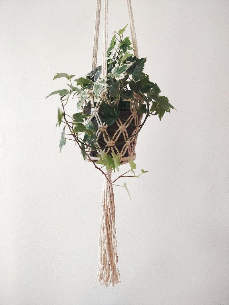 - Blumenampel Sophia | plant hanger | Boho | Entho | Bohochic | Pflanzen | creme | urban jungle - Blumenampel Sophia | plant hanger | Boho | Entho | Bohochic | Pflanzen | creme | urban jungle