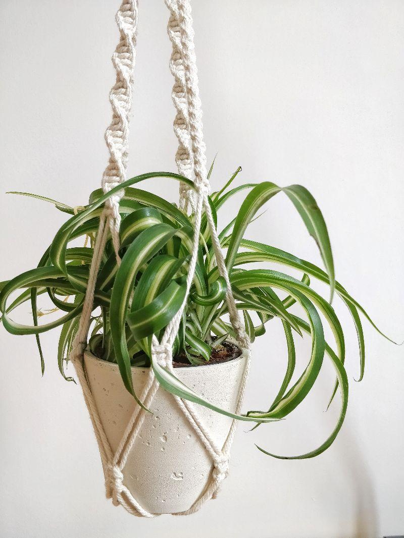 Kleinesbild - Zweistöckige Blumenampel Elia   plant hanger   Boho   Entho   Bohochic   Pflanzen   creme   urban jungle