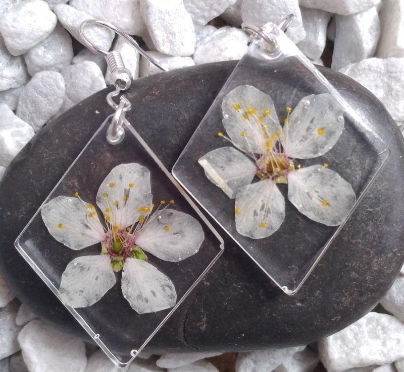 - Ohrhänger mit echten weißen Blüten in glasklarem Resin - Ohrhänger mit echten weißen Blüten in glasklarem Resin