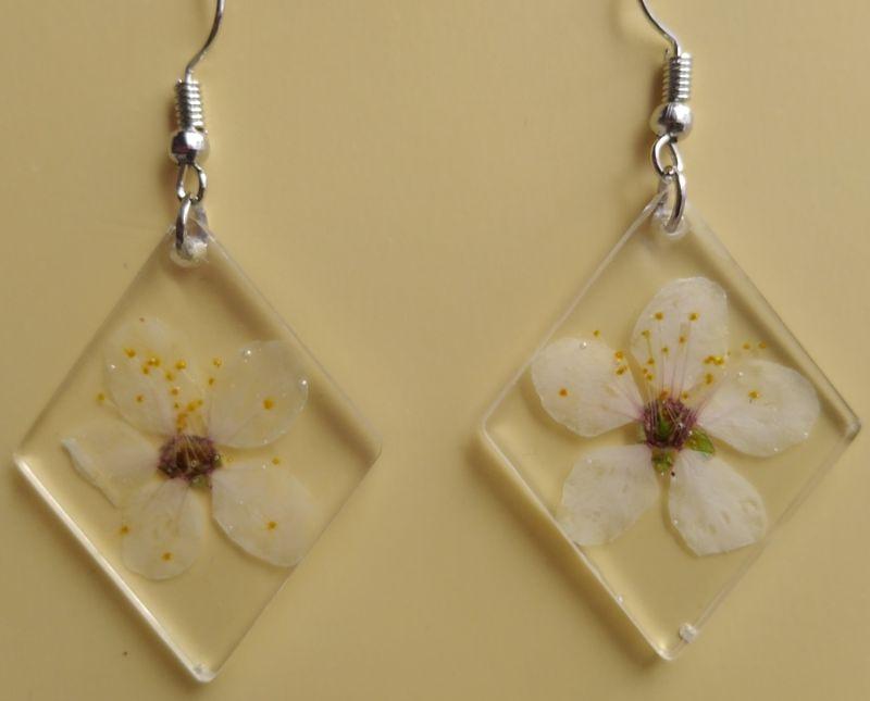 Kleinesbild - Ohrhänger mit echten weißen Blüten in glasklarem Resin