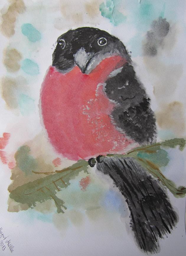 - Handgemaltes Aquarellbild Dompfaff gemalt mit Aquarellfarben auf Aquarellpapier direkt von der Künstlerin kaufen - Handgemaltes Aquarellbild Dompfaff gemalt mit Aquarellfarben auf Aquarellpapier direkt von der Künstlerin kaufen