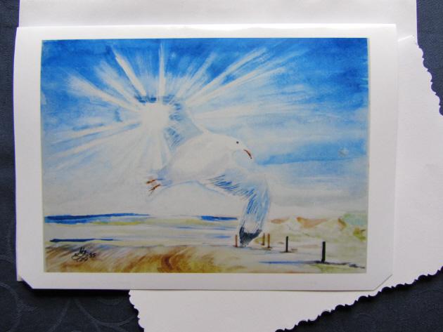 - Grußkarte Faltkarte Möwe handgemalt fotografiert und gedruckt auf Fotopapier kaufen - Grußkarte Faltkarte Möwe handgemalt fotografiert und gedruckt auf Fotopapier kaufen