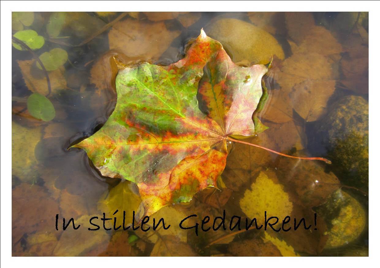 Kleinesbild - Beileidskarte Ahornblatt auf Wasser fotografiert und gedruckt auf Fotopapier mit dem Schriftzug In stillen Gedanken