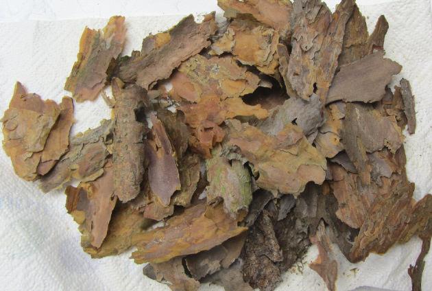 - Baumrindenstücke Natur Pur (Grundpreis 100 g/1,95 €) zum Basteln und Dekorieren von Bilderrahmen Bastelmaterial - Baumrindenstücke Natur Pur (Grundpreis 100 g/1,95 €) zum Basteln und Dekorieren von Bilderrahmen Bastelmaterial