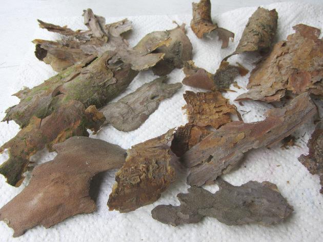 Kleinesbild - Baumrindenstücke Natur Pur (Grundpreis 100 g/1,95 €) zum Basteln und Dekorieren von Bilderrahmen Bastelmaterial