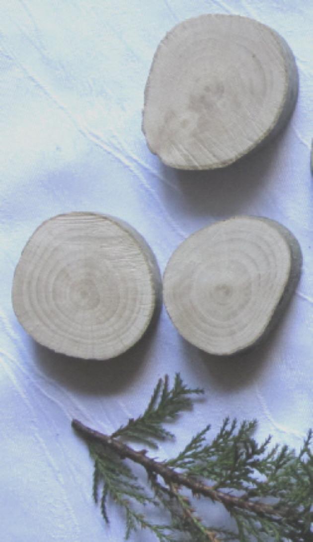 - 3 kleine Baumscheiben handgemacht aus Buchenholz zum Basteln oder Bemalen kaufen - 3 kleine Baumscheiben handgemacht aus Buchenholz zum Basteln oder Bemalen kaufen