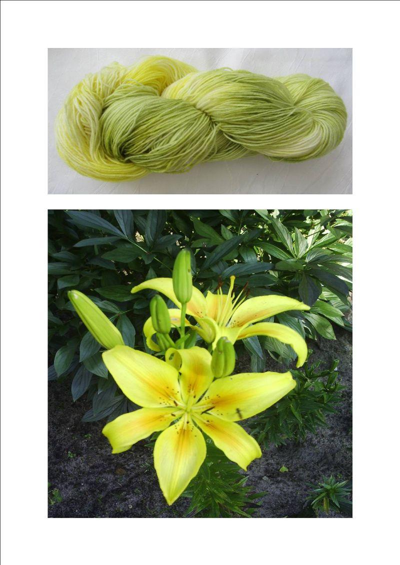 Kleinesbild - Handgefärbte Sockenwolle Gelbe Lilie in Zartgelb und -grün (4-fach) Nadelstärke 2 - 3 (Grundpreis 100 g/11,00 €)