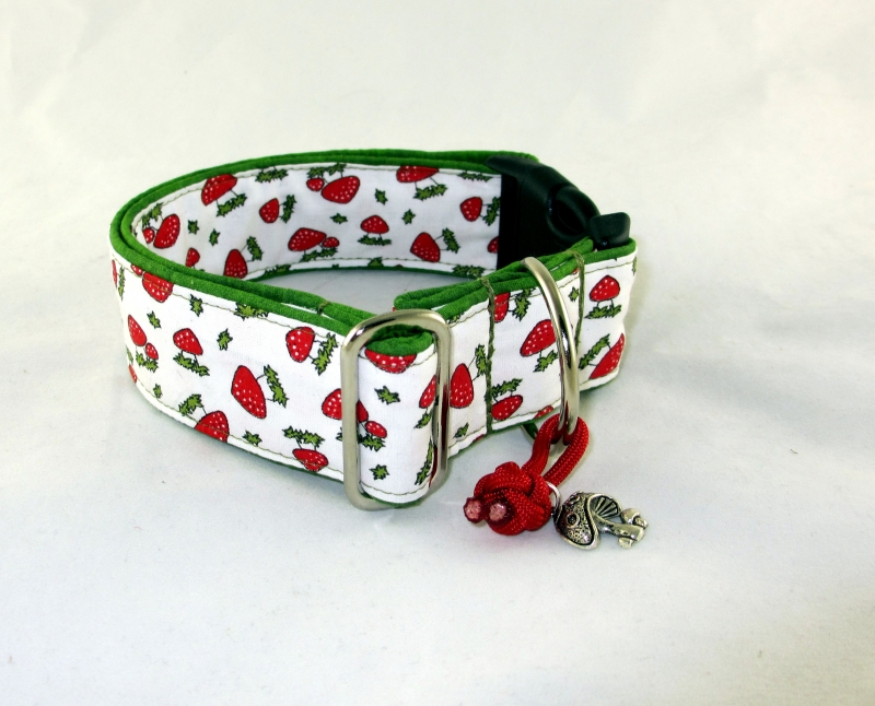 Kleinesbild - Hundehalsband Glückspilz Halsband Hund Nylon Klickverschluss Kunststoffverschluss oder Metallverschluss wahlweise Zugstopp verstellbar breit