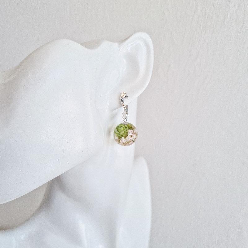 Kleinesbild - Ohrringe mit Hopfen und Ozothamnus