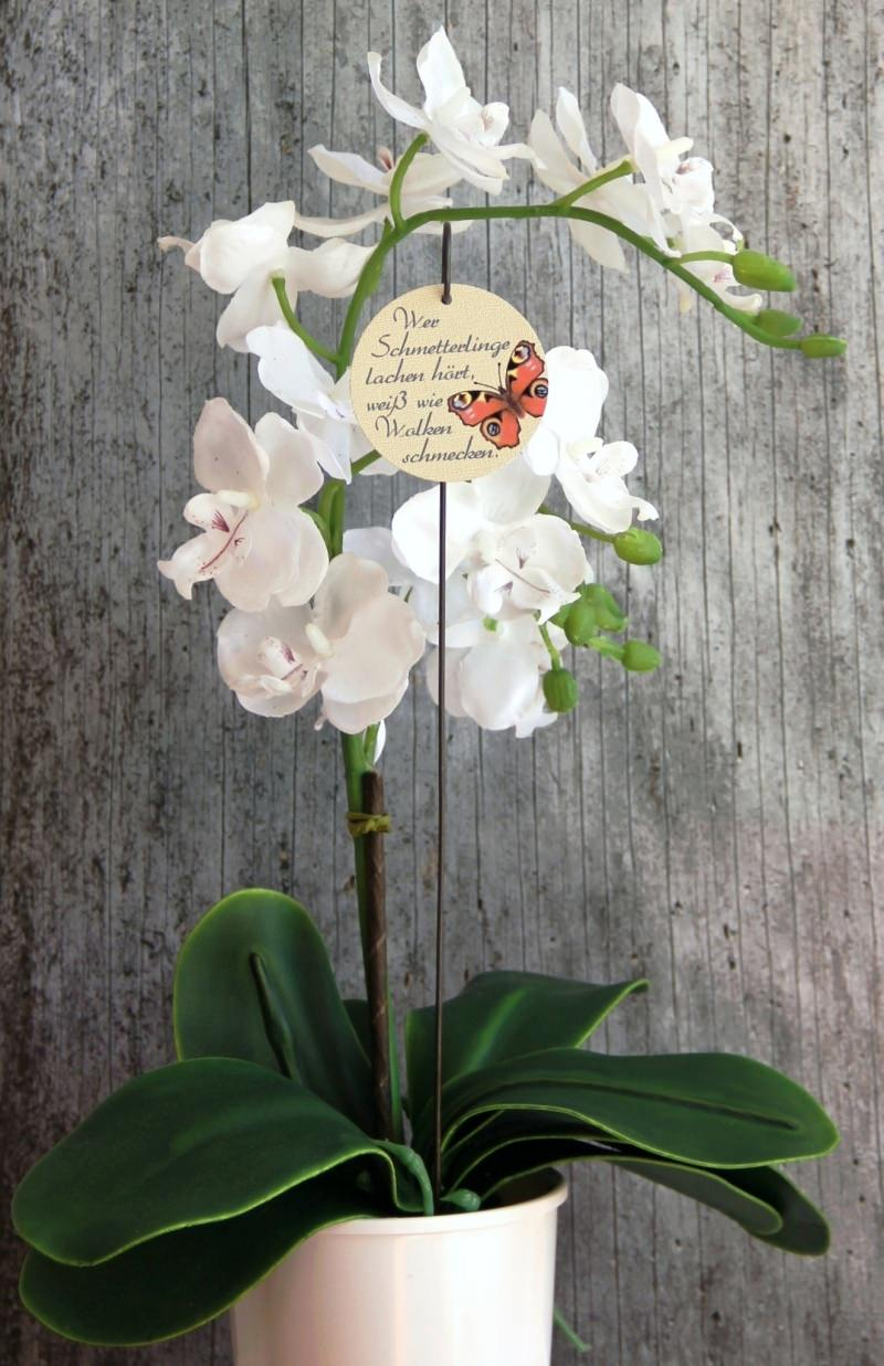Kleinesbild - Blumenstecker Poesie2 von ZWEIFARBIG Tagpfauenauge mit Spruch Blumenschmuck homedeko Geschenk Dekoration Geburtstag