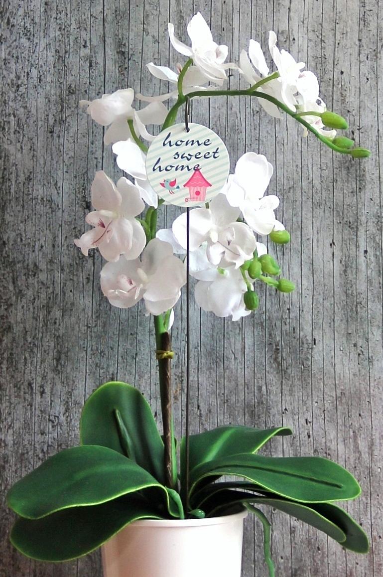 Kleinesbild - Blumenstecker **Vogelhaus** von ZWEIFARBIG Blumenschmuck Hauseinweihung homedeko Geburtstag Geschenk Umzug Dekoration