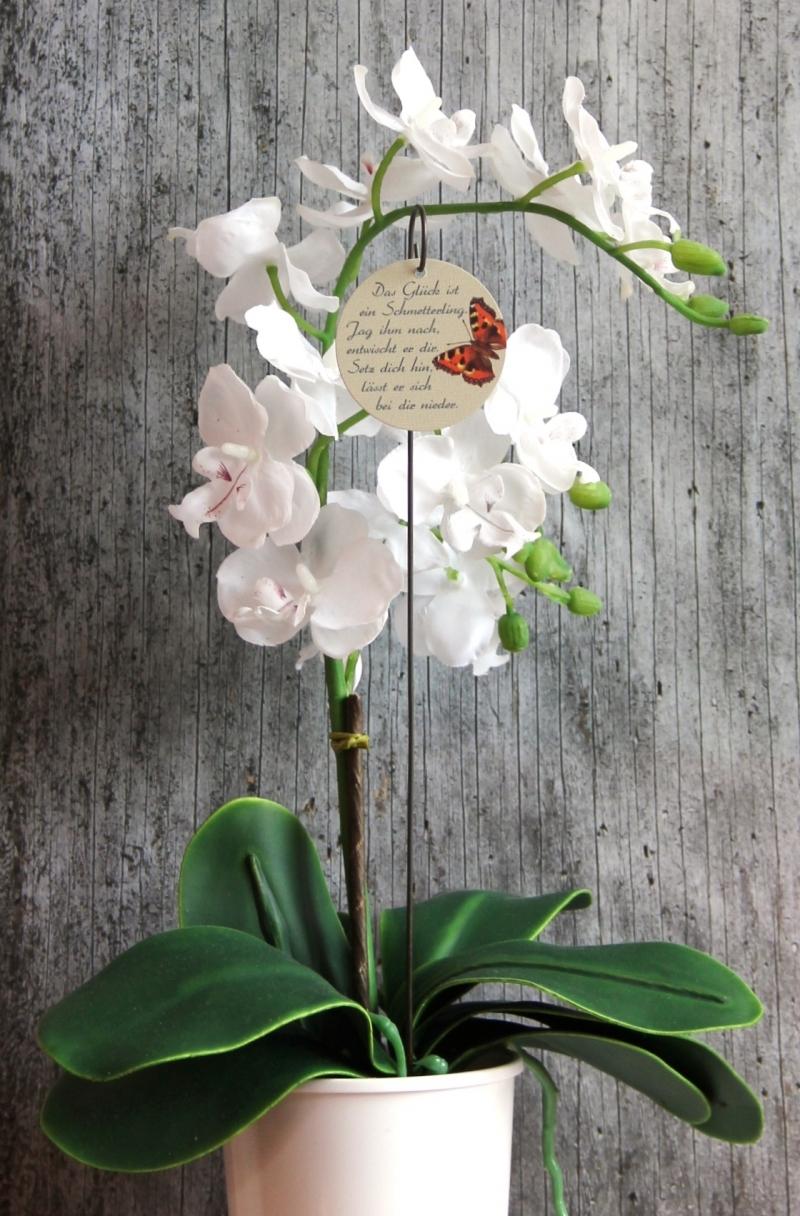 Kleinesbild - Blumenstecker **Poesie14** von ZWEIFARBIG Kleiner Fuchs homedeko Geschenk Dekoration Blumenschmuck Geburtstag Tischdeko