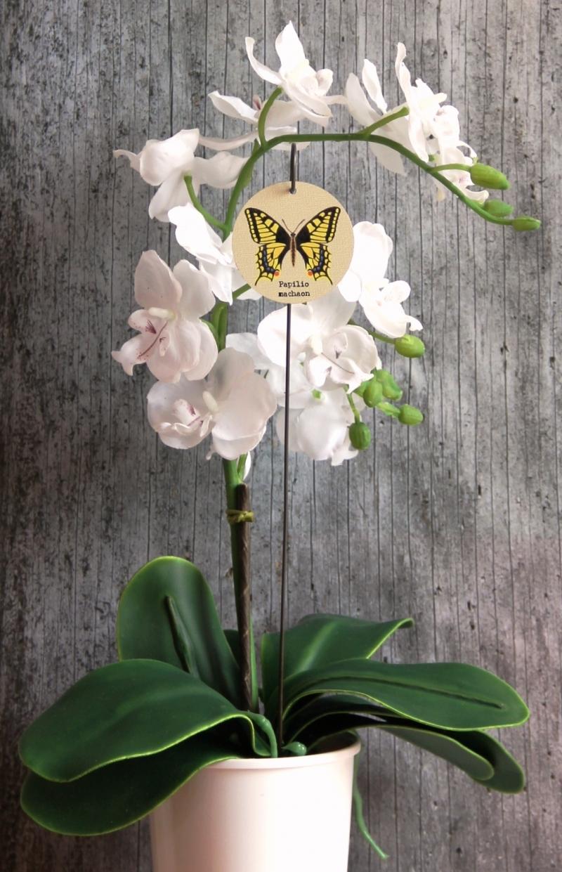 Kleinesbild - Blumenstecker **Schwalbenschwanz** von ZWEIFARBIG Blumenschmuck Wohndeko Dekoration Geburtstag Hauseinweihung homedeko Geschenk