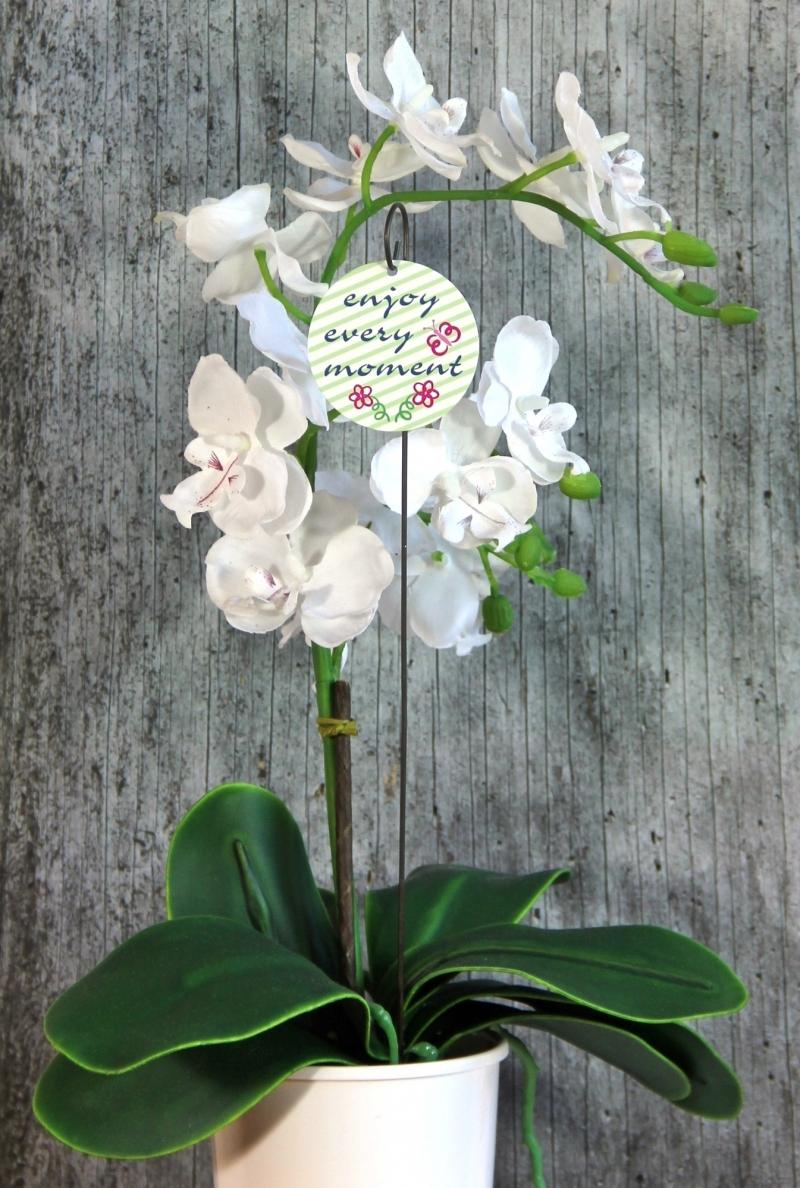 Kleinesbild - Blumenstecker **2 Blumen** von ZWEIFARBIG Blumenschmuck Geburtstag Dekoration Geschenk Umzug Hauseinweihung Wohndeko Tischdeko
