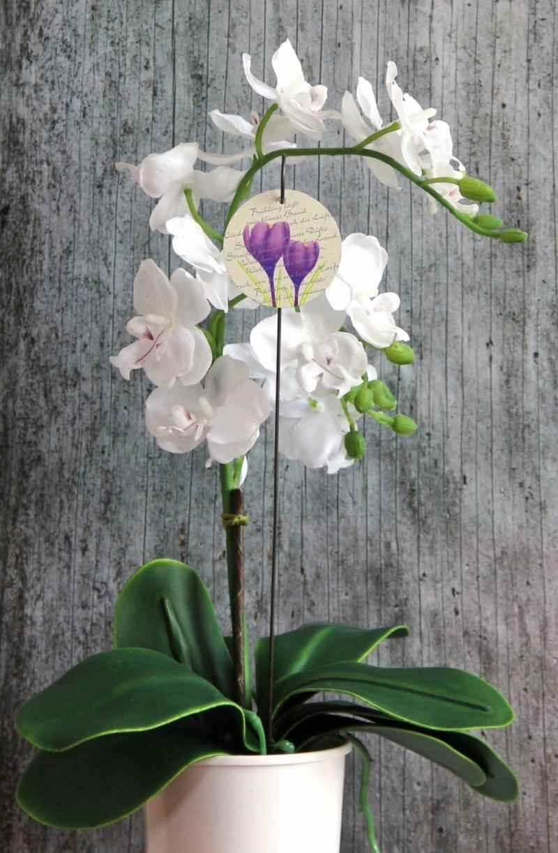 Kleinesbild - Blumenstecker Poesie5 von ZWEIFARBIG Krokus lila Ostern Blumenschmuck Osterdeko homedeko Geschenk Dekoration Geburtstag