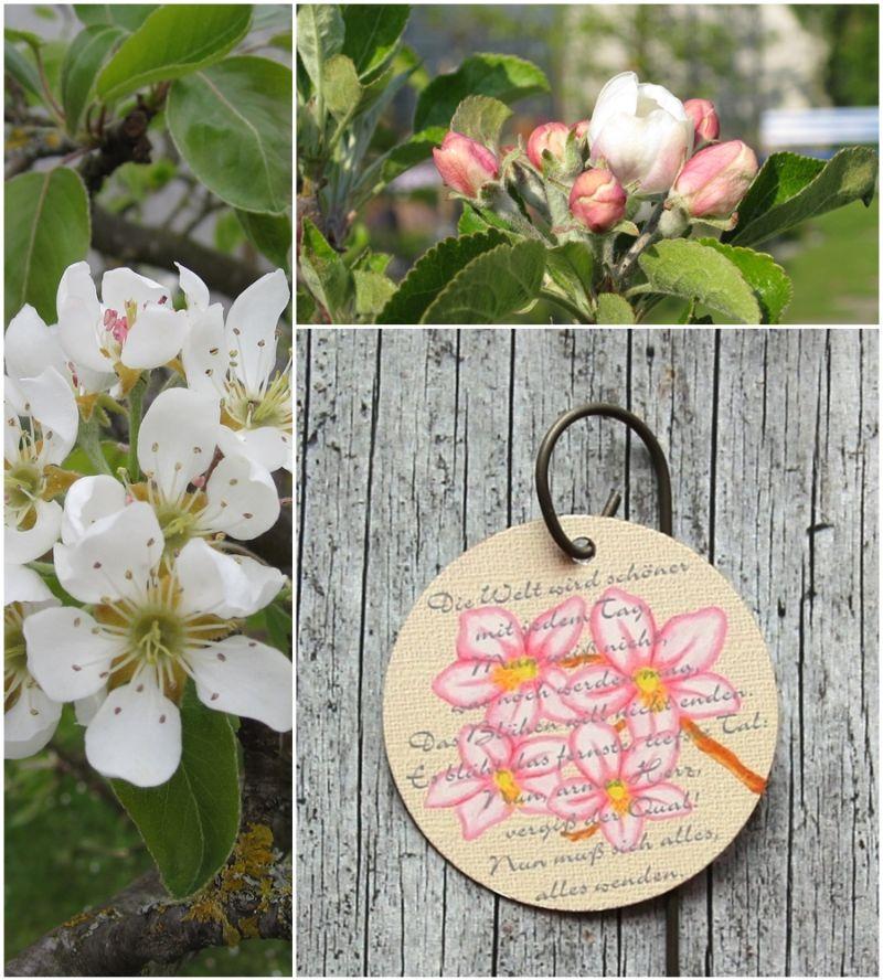 Kleinesbild - Blumenstecker Poesie7 von ZWEIFARBIG Obstblüte Ostern Dekoration Geburtstag Blumenschmuck Osterdeko homedeko Geschenk Muttertag