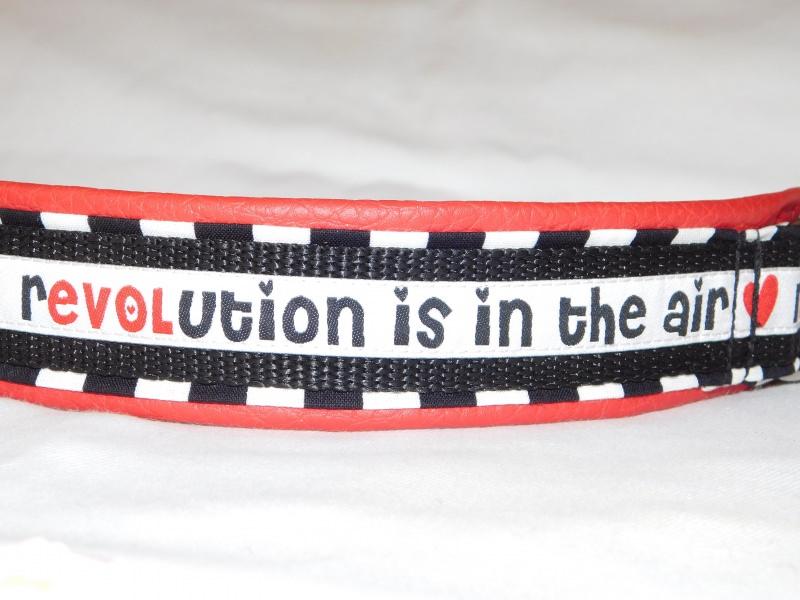 Kleinesbild - Hundehalsband - Revolution - mit  Lederimitat unterfüttert