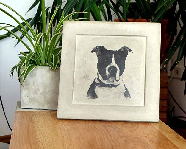 Kleinesbild - Dein Foto - Fotodruck Bilderdruck mit deinem Tier oder nur Du, oder als Gruppe?  Auf Betonbilderrahmen!