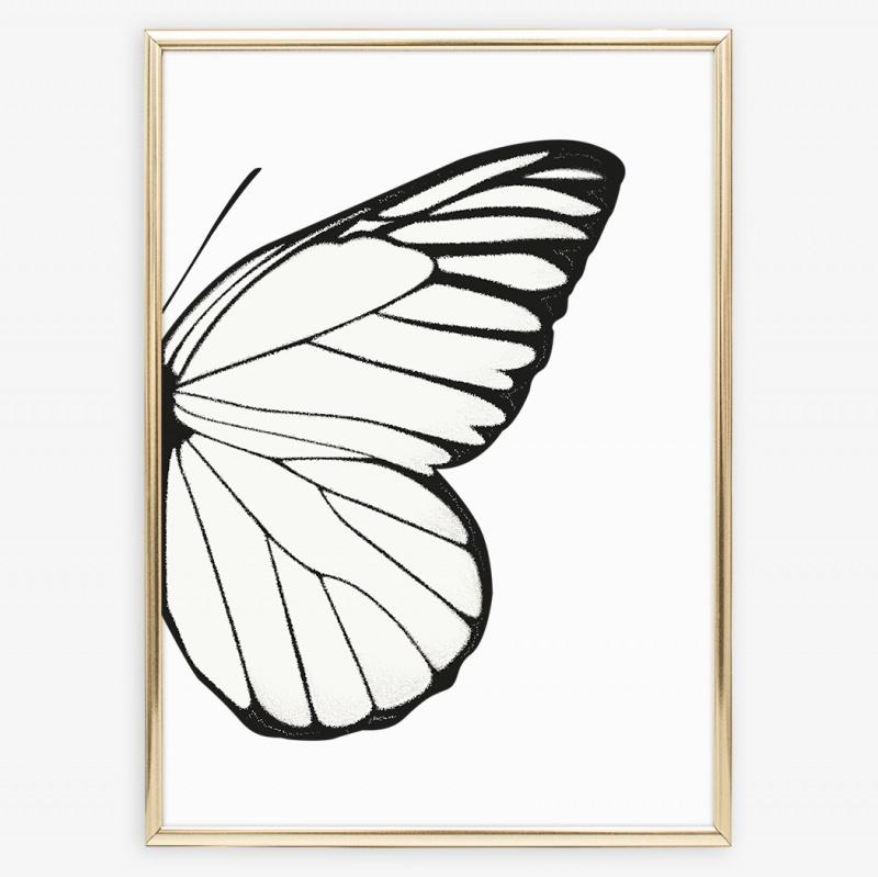 - Poster, Kunstdruck, Wandbild, Schmetterlings-Illustration: Butterfly Wing Right - Poster, Kunstdruck, Wandbild, Schmetterlings-Illustration: Butterfly Wing Right